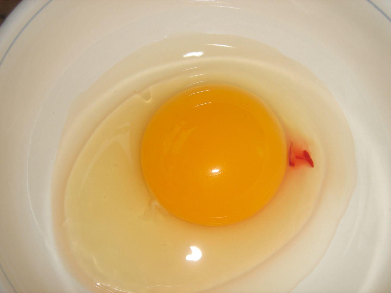 blood on egg